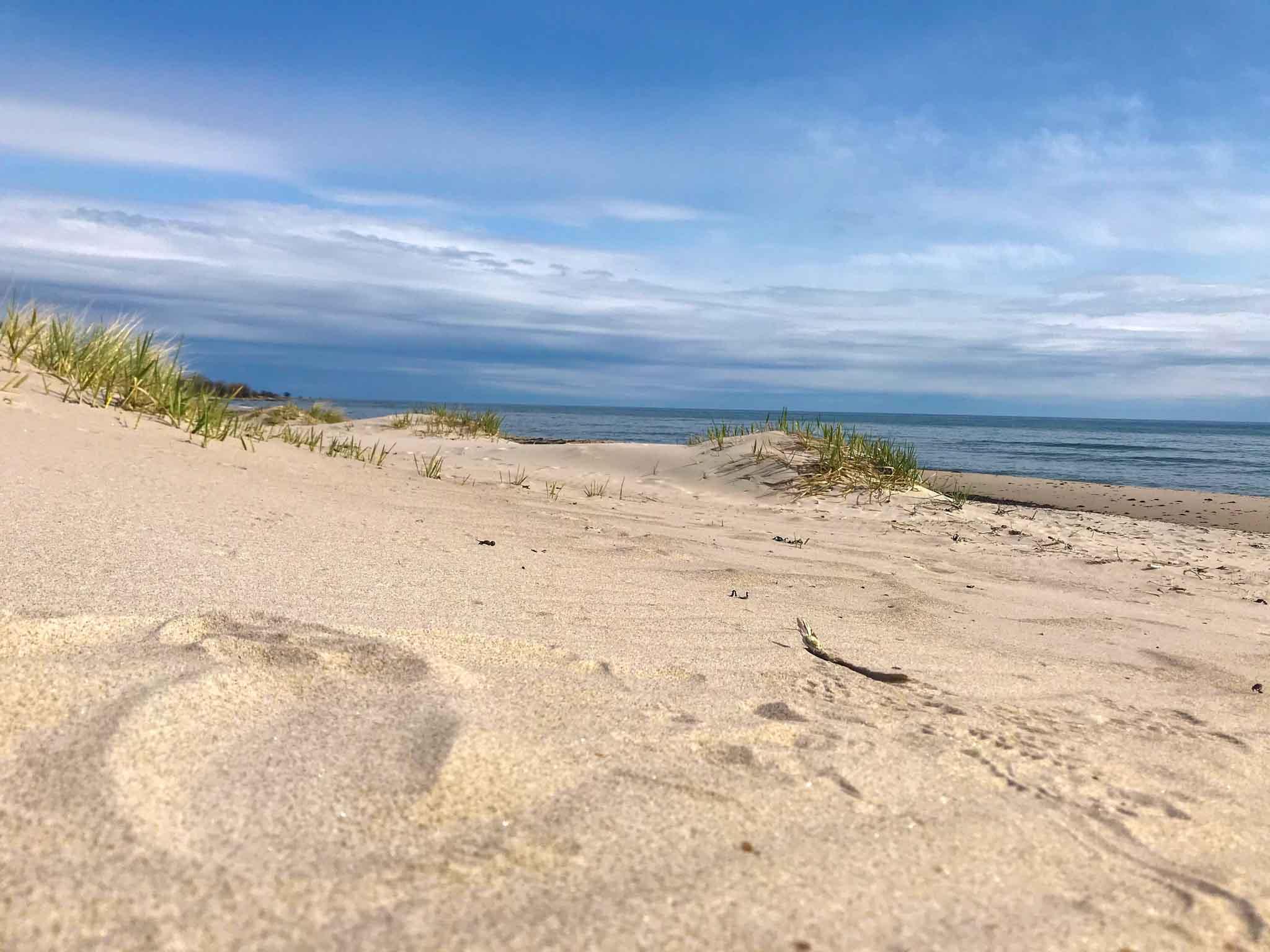 plaża Skania