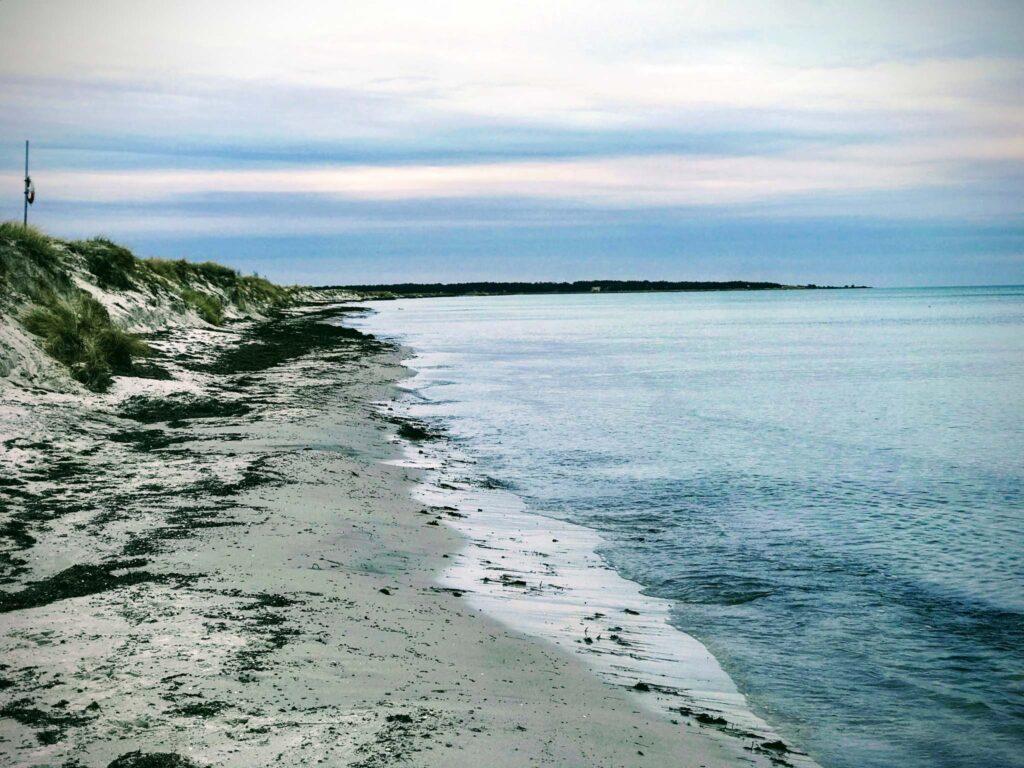 Plaża Falsterbo